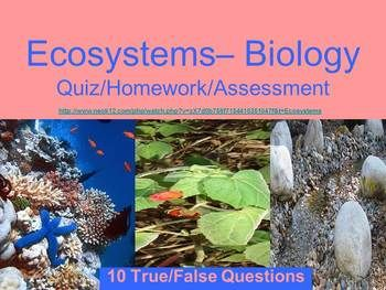 """Now available in my """"Biology Quizzes Bundle"""" for more than 50% off the individual price!  All graphics are author created or public domain.  My Special Education students could never take the regular Biology tests that the core curriculum included - the print was too small - too many questions - questions were more """"trick"""" questions than actual content knowledge - answers were required to be short essay form."""