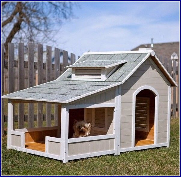 Dog Houses For Multiple Dogs
