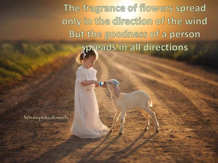 the fragrance of flowers
