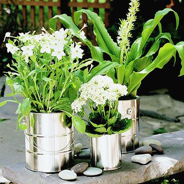Hammer nail holes through the bottom of old paint cans and add potting soil and flowers.