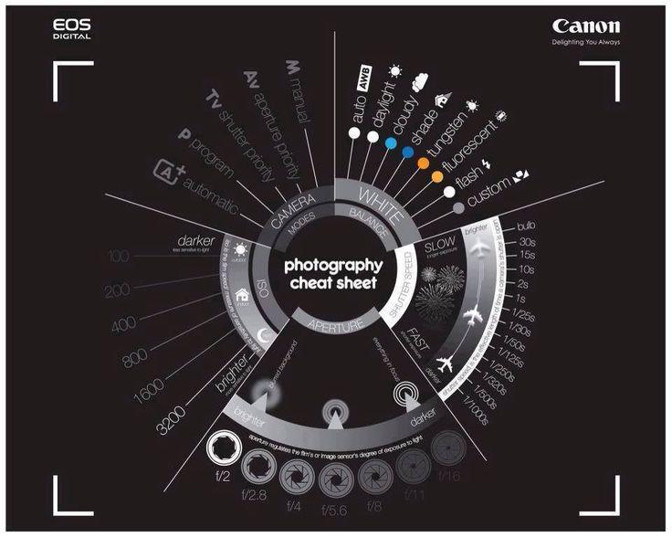 Confira dicas para filmar e fotografar sem tremer