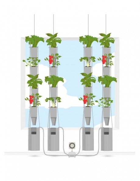 Another Version Of A Hydroponic Window Garden.
