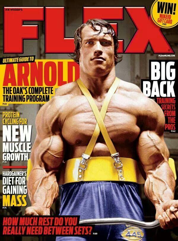 11 best 7x Mr Olympia Arnold Schwarzenegger images on Pinterest - fresh arnold blueprint day 11