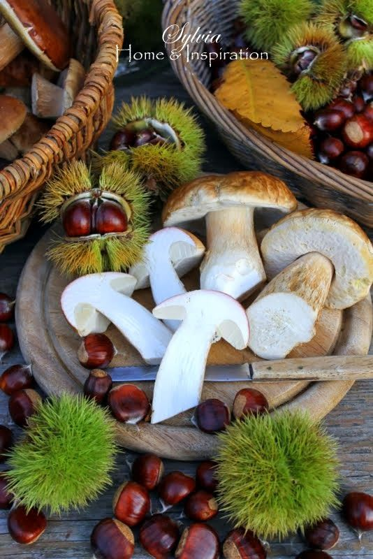 mushrooms and chestnuts....