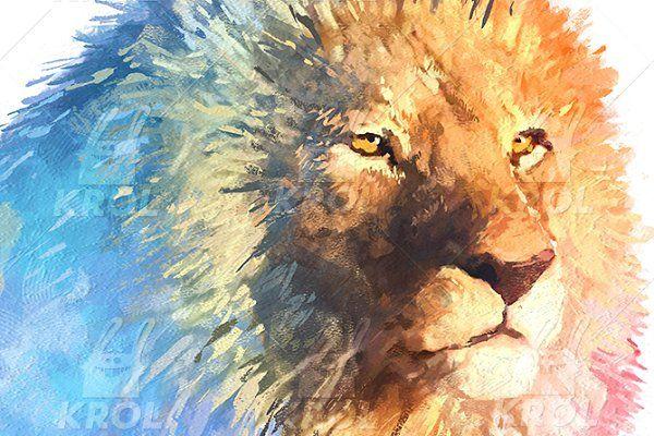 Double exposure set   Lion - Illustrations
