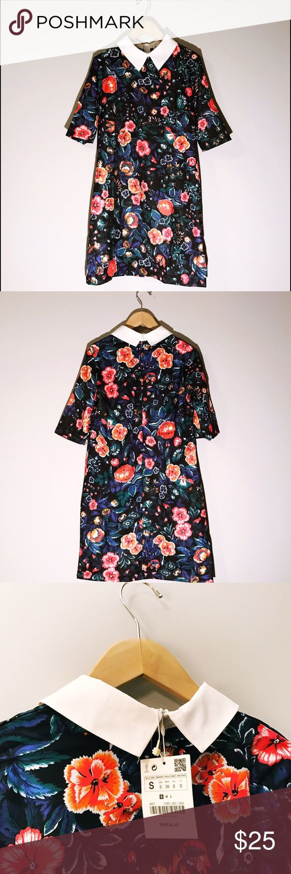 """Zara Floral Dress with White Collar I recently purchased this perfect-for-Spring dress through Posh. Disappointingly, when I tried it on, it didn't fit, so I'm now re-Poshing it at the same price I purchased it for. Some Zara pieces run small and this is true for this dress. It's a small small...more like an extra-small. The vibrant floral pattern is polyester while the white collar is cotton. Unlined. Back zipper. Dress length is 31.5""""/Sleeve length: 12"""". Price is firm. Zara Dresses Mini"""