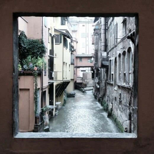 Window... Bologna