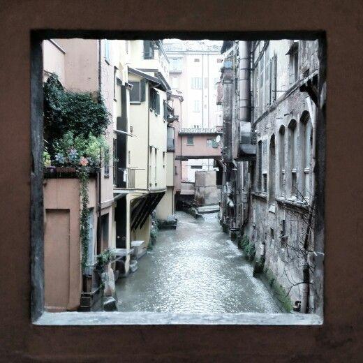 Window... Bologna