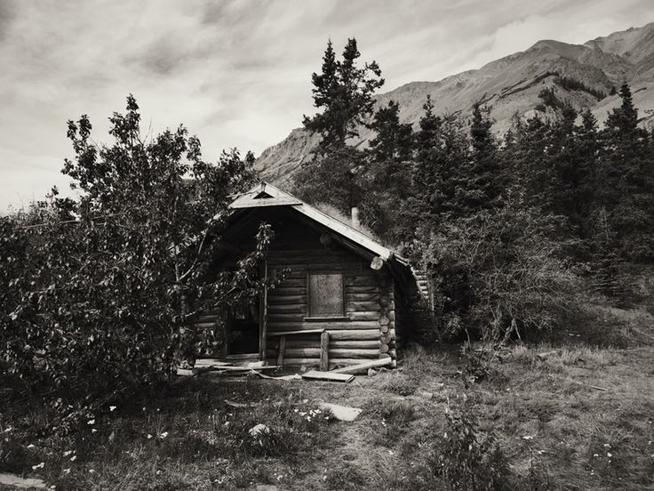 Abandoned Log Cabin Kluane Lake Haines Highway Yukon