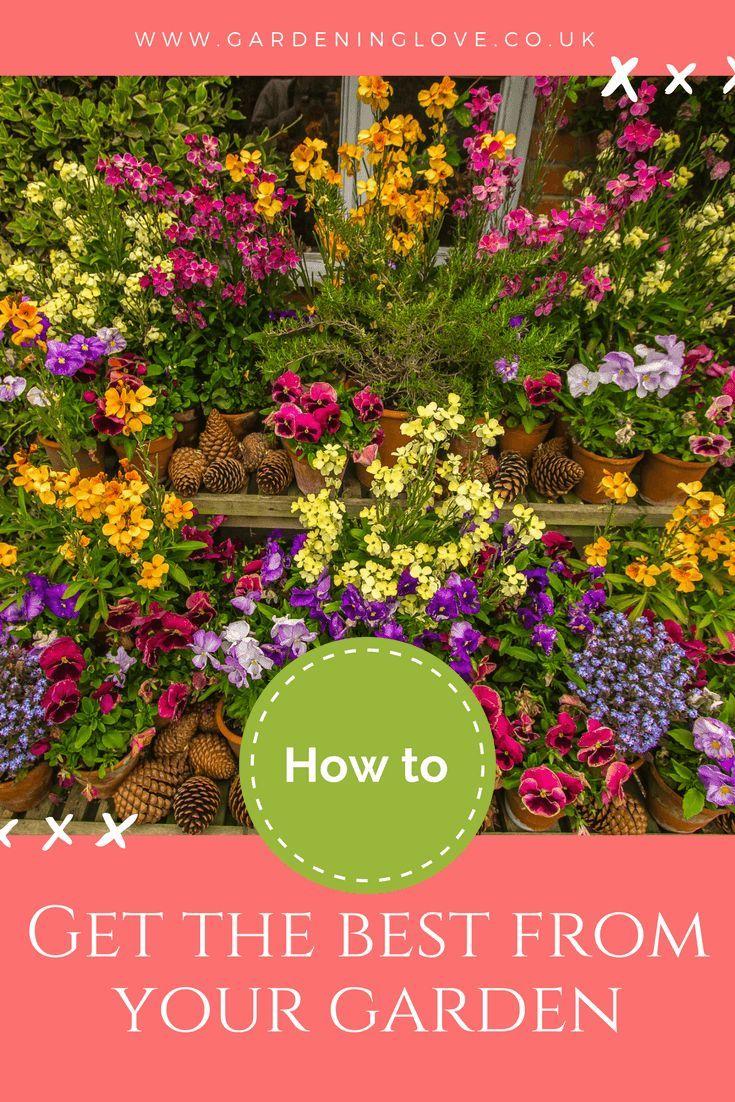 General Gardening Tips Gardening Tips Easy Garden Gardening