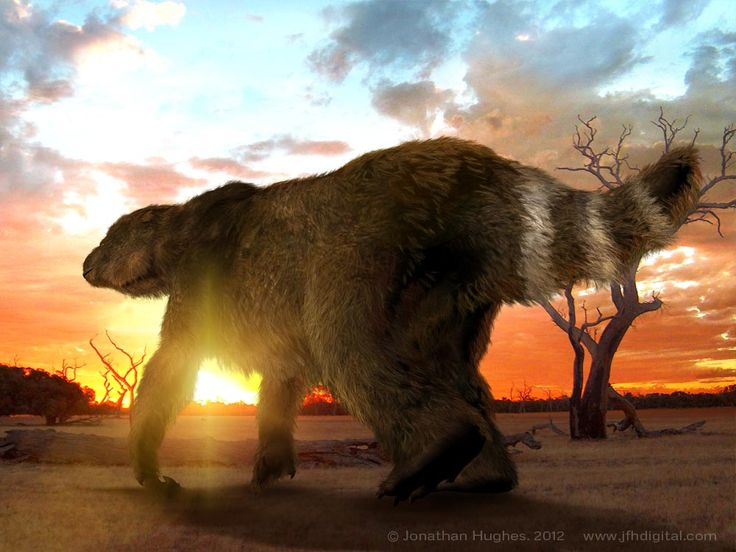 Megatherium (Giant Ground Sloth)