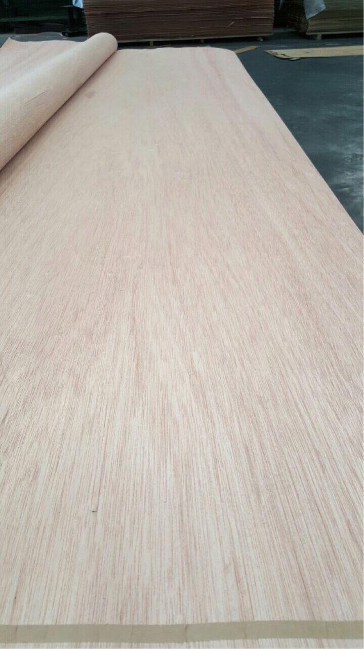 Meranti Rotary Wood Veneer Wood Veneer Veneers Wood Furniture
