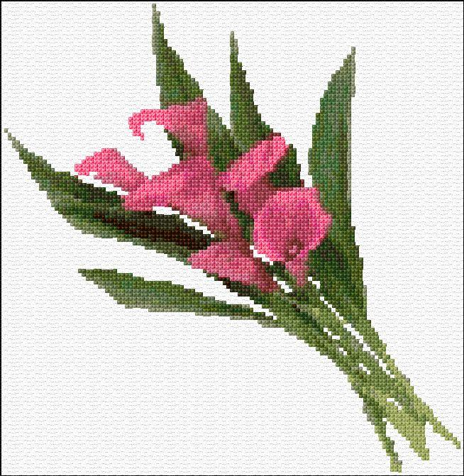 free pattern: calla lilies by Ann Logan