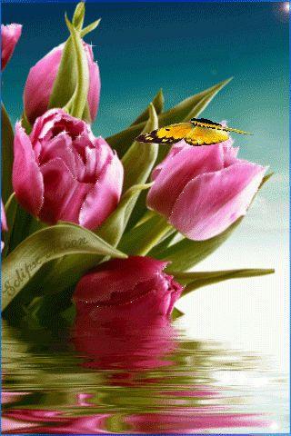 mariposas movimiento-gifmaniacos.es (19)