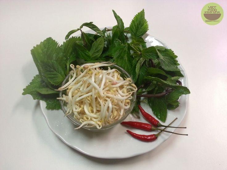 Jak si nechat jednoduše naklíčit mungo fazole  Více na : http://www.vietfoodfriends.cz/homepage/detail/jak-si-nechat-jednoduse-naklicit-mungo-fazole-32