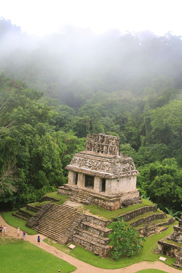 Ruinas Mayan_Temple_of_the_Sun El mayas de Palenque se sientan en las selvas cubiertas de niebla del este de México