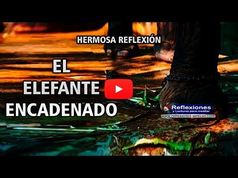 El Elefante encadenado (Vídeo Reflexión) - Reflexiones y Lecturas para Meditar