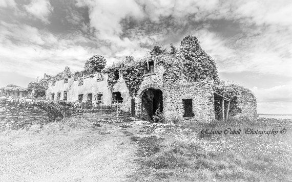 Beagh Castle by peridotphotography on Etsy, €18.00