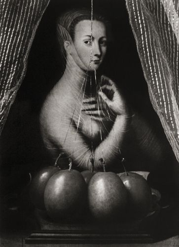 Paul Kilsby - Diane de Poitiers