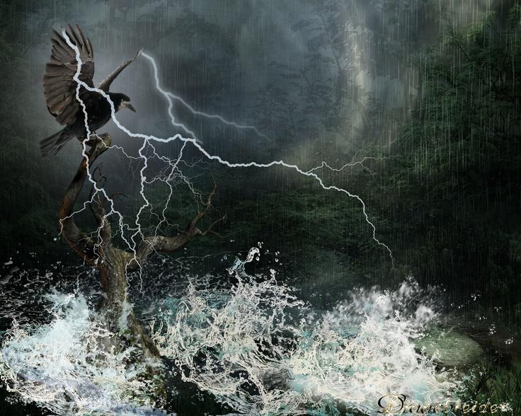 Storm Water Conductor : Best pam carriker images on pinterest art