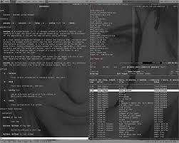 Image result for awesome wm themes