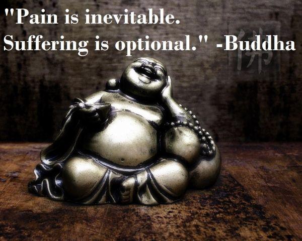 """Pain is inevitable. Suffering is optional."" -Buddha - http://buddhaphilosophy.com/?p=436"