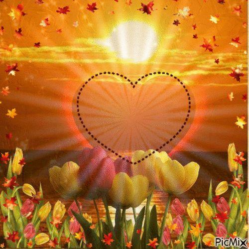 Foto: Amor, vida, paixão, carinho, prazer, preocupação, bem querer, alegria, compreensão, amizade, gratidão, companheirismo, solidão, felicidade, sintonia, energia, afeição, química, sentimento ... ...duas almas ligadas por um só objetivo..