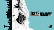 Grey's Anatomy - Episodes