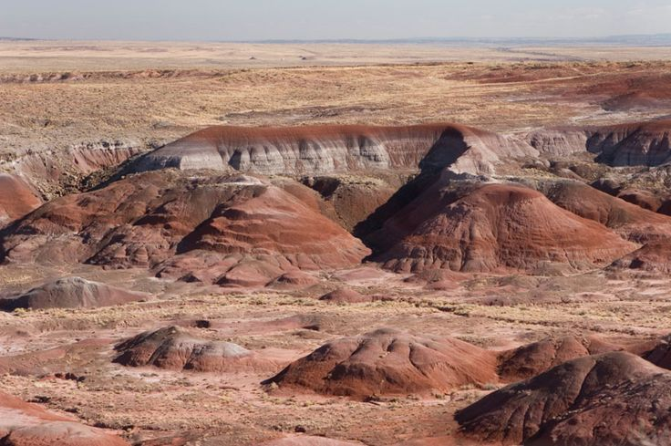 Desert | Painted Desert & Petrified Forest Pictures.