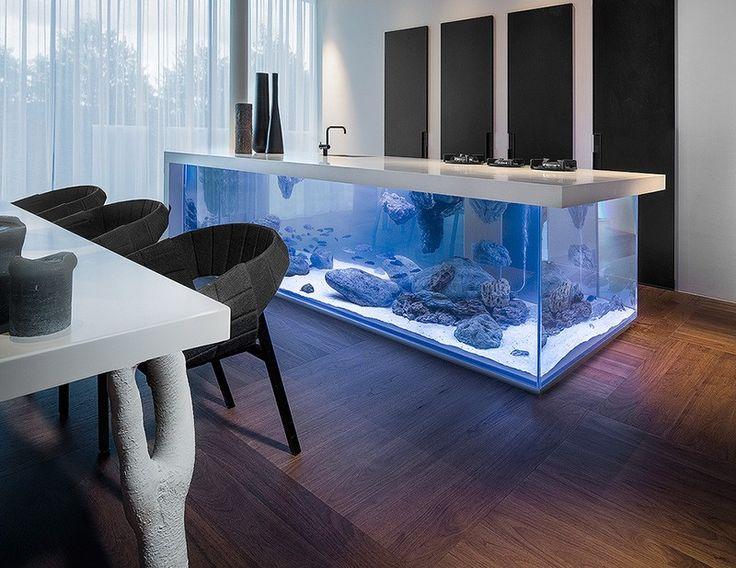 Kitchen Island Fish Tank 41 best aquariums images on pinterest | aquarium ideas, aquarium