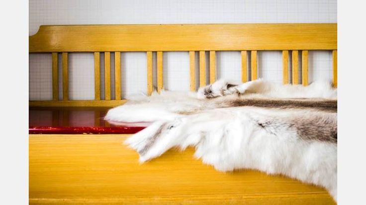På plats. Den gula soffan fanns redan i huset Wennberg när Gunhild köpte det, och har fått behålla sin ursprungsplats i köket.   Bild: Thea Holmqvist