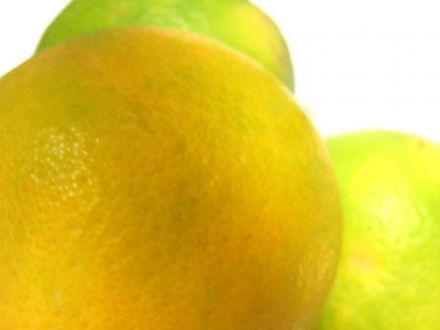 Orangenrot und Zitronengelb  Wann sind die Zitrusfrüchte wirklich reif?  Von Udo Pollmer