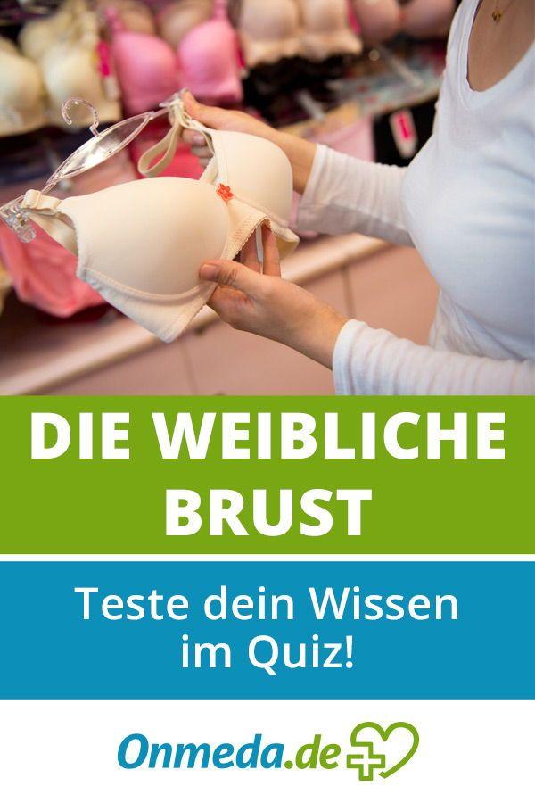 24 besten Anatomie // Anatomisches Wissen Bilder auf Pinterest ...