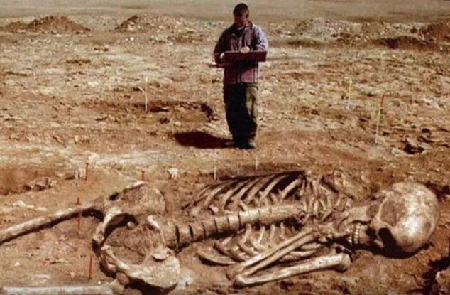 Encontrado esqueleto humano partes y es un esqueleto humano gigante, me sorprendió mucho. – Vídeo viral