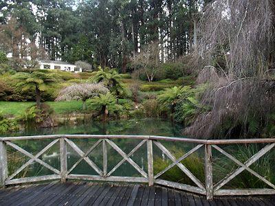 National Rhododendron Gardens, Olinda, 50 om east of central Melbourne