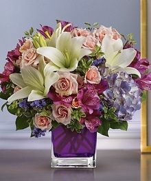 Veldkamp's Flowers, Denver Florist Since 1959. We Offer Flowers, Plants, Gift Baskets, Wedding Flowers, Sympathy Flowers, Event Flowers and More. Local Same Day Flower Delivey to Denver, Arvada, Aurora, Boulder, Englewood, Lakewood, Parker, Thornton, Wheat Ridge and Westminster.