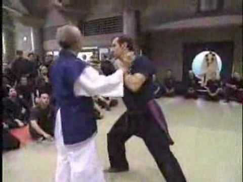 BUJINKAN NINPO TAIJUTSU - the element of surprise applied on worse case scenarios.