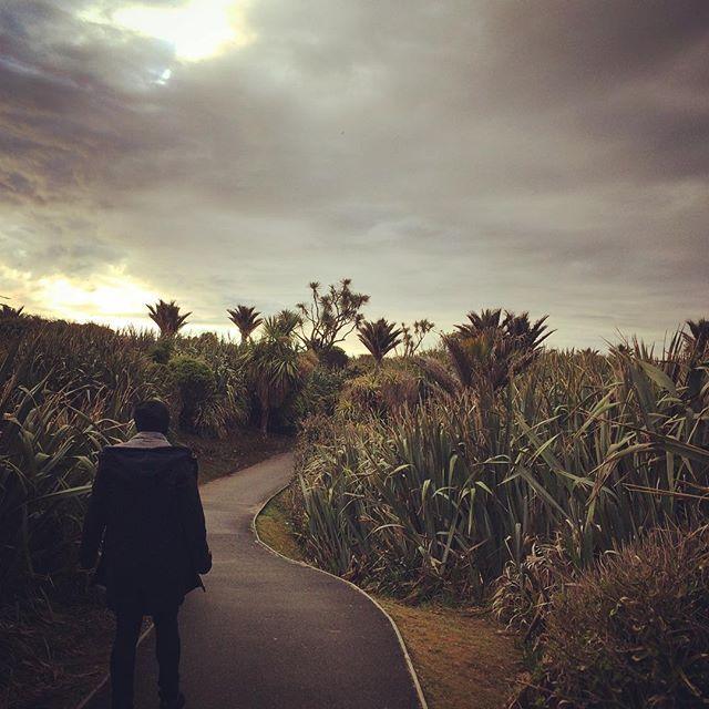 Let's go on an adventure! Punakaiki here we go, new job, new place to discover...  #herewegooo #travelbug #adventure #wanderlust #punakaiki #pancakerocks #newzealand @nicolatje