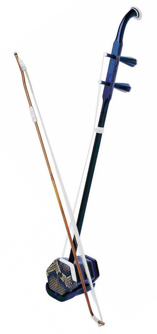 The Erhu is a traditional Chinese instrument, with 2 strings, and bowed and plucked.