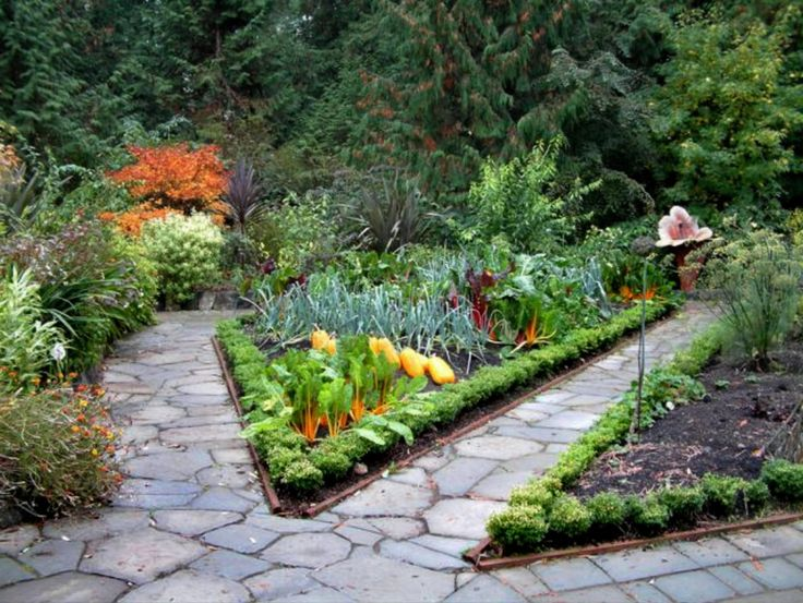 edible garden design 12 useful ideas