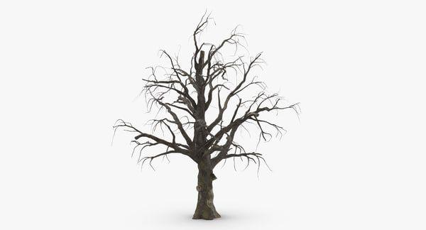 3 Old Dead Trees C4d Fantasy Tree Tree Silhouette Spooky Trees