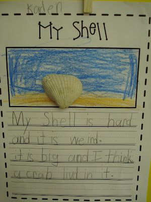 Descriptive writing to go with House for Hermit Crab?