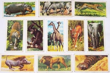 Vintage tea cards