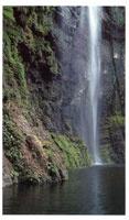 En las inmediaciones de Palo de Letras y el alto del Limón en la frontera con Panamá hay innumerables cascadas dentro de las que se destacan el Tilupo, el Tendal y la Tigrera.