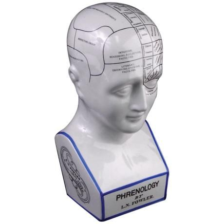 phrenology a popular method of psychology Rpg genre has been popular for a very long time top 10 failed psychology theories as there are no scientific methods to precisely trace personality traits to specific parts of the brain as phrenology claimed.