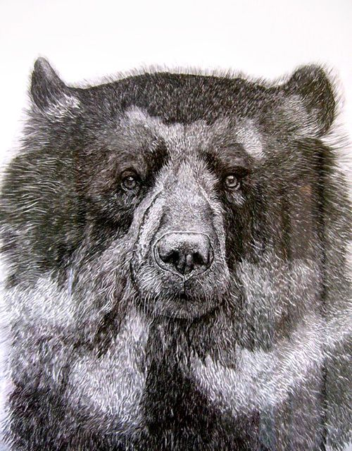 I want to kiss this sad bear.
