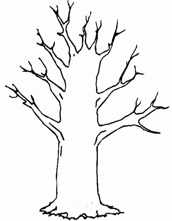 Winter Tree Coloring Page In 2020 Tree Coloring Page Tree