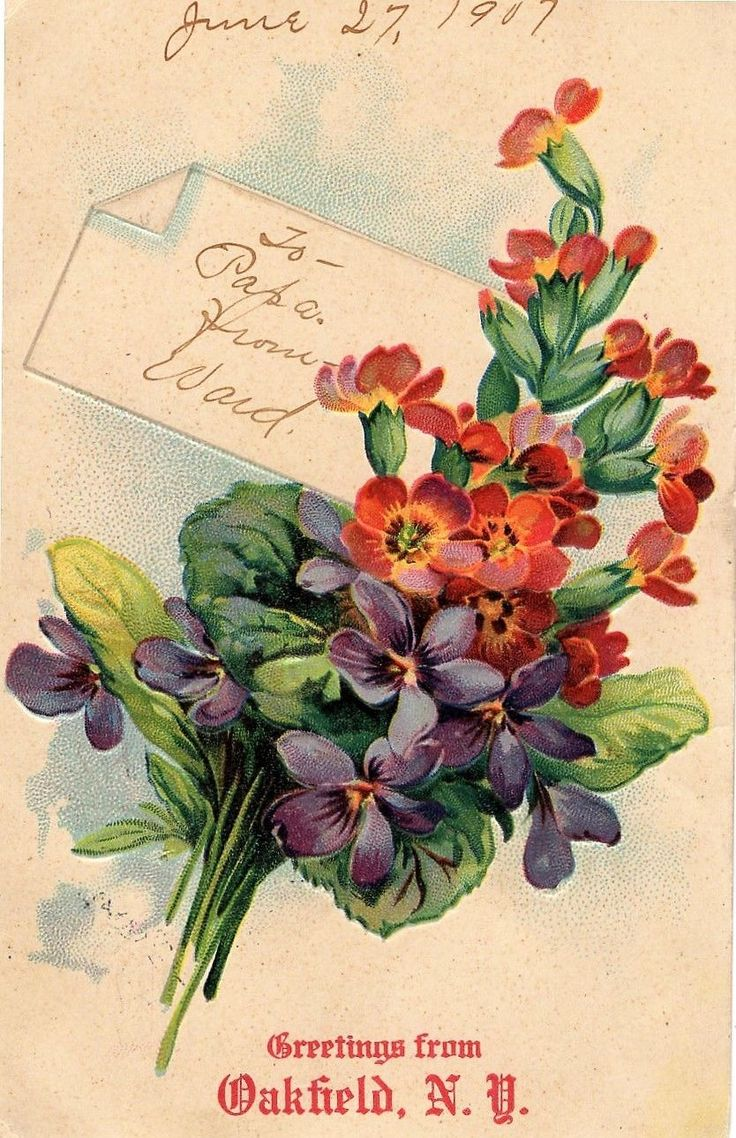 New york genesee county oakfield - New York Greetings From Oakfield Lovely Bouquet For Papa 1907 Embossed