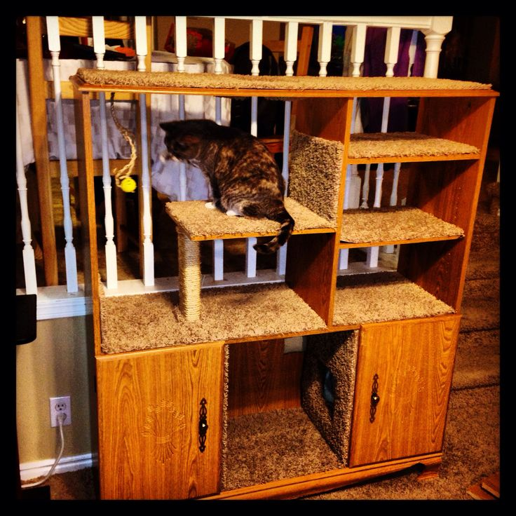 Look what I made out of an old entertainment center!  DIY Pet Entertainment Cat Tower Crafty Redo Reuse Repurpose