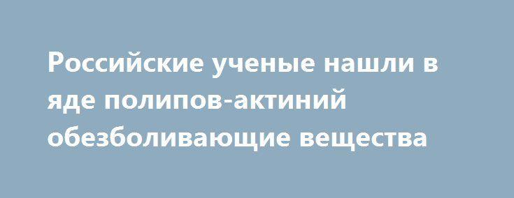 Российские ученые нашли в яде полипов-актиний обезболивающие вещества http://apral.ru/2017/05/18/rossijskie-uchenye-nashli-v-yade-polipov-aktinij-obezbolivayushhie-veshhestva/  В яде морских полипов-актиний исследователи, представляющие Российскую академию наук, обнаружили [...]